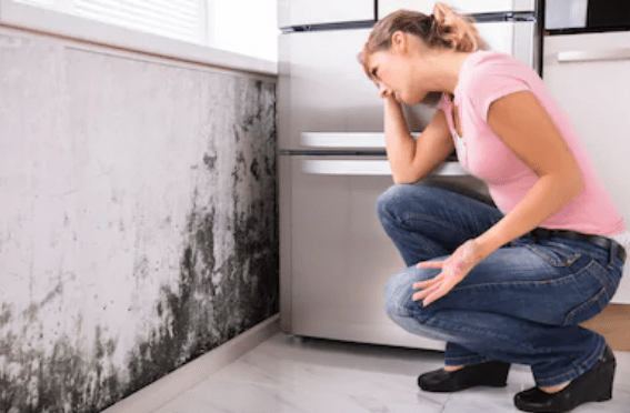 Mould in Your Home! Is it The Silent Killer?
